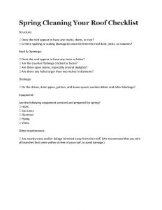 Spring Cleaning Your Roof Checklist