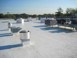 Bi Lo Fort O Commercial Roofing Project