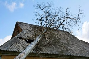 Missing shingles, loss of granules, and water leaks can be signs of storm damage to roof.
