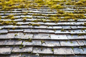 7 Signs You May Need to Consider Chattanooga Roof Replacement
