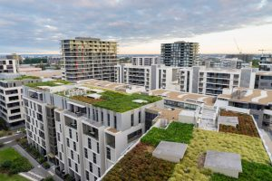 Benefits of a Green Roof for Your Chattanooga Building